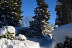 Schnee 26